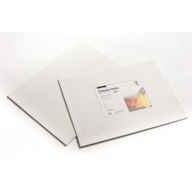Phoenix- Cartone Telato 10x10 - Olio e Acrilico